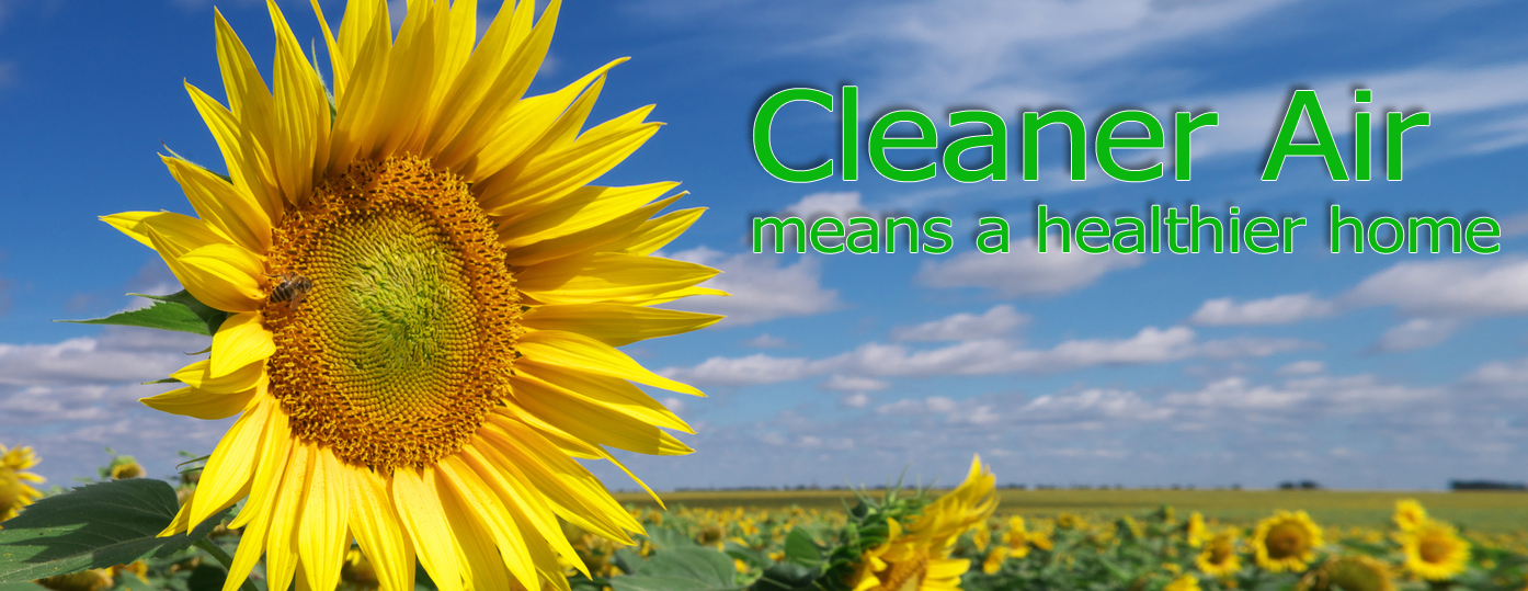 Clean Air Sunflowers Duct Clean